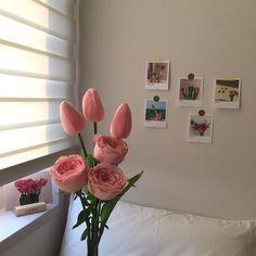 ꒰ 💌 ꒱┊𝚙𝚒𝚗𝚝𝚎𝚛𝚎𝚜𝚝: 𝚘𝚔𝚊𝚢𝚢𝚟𝚒𝚟 Flower Aesthetic, Pink Aesthetic, Trendy Wallpaper, Pink Wallpaper, Pink Tone, My Flower, Decoration, Aesthetic Wallpapers, Room Inspiration