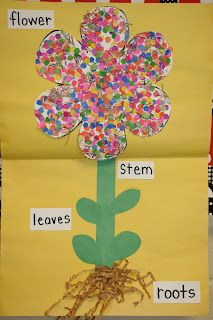 Lees Kindergarten: cute spring and plant unit would go along with an activity about how flowers grow. Also, this matches a book that was added in on our Unit plan already. Art and science activity! Kids Crafts, Preschool Projects, Classroom Crafts, Preschool Crafts, Classroom Ideas, Art Projects, Spring Art, Spring Crafts, Spring Theme