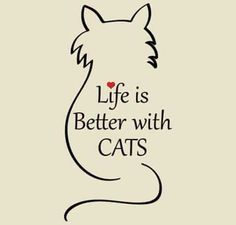 Life is better with cats                                                                                                                                                                                 More