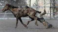 A horseman falls from the saddle as he takes part in a Kok-boru, or goat dragging, competition as part of Navruz, an ancient holiday marking the spring equinox, celebrations in the capital Bishkek March Trail Riding, Horse Riding, Short Game Golf, Go Diego Go, Asian Games, Tv Tropes, Sports Pictures, Horse Love, Horseback Riding