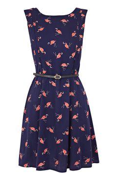 Oasis Flamingo Skater Dress
