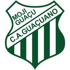 Soccer, Football, Logos, Football Squads, Palm Plants, Hs Sports, Brazil, World, Cards