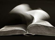 Leggere fa bene…anche in carcere. Un progetto di legge per portare i libri tra i detenuti.