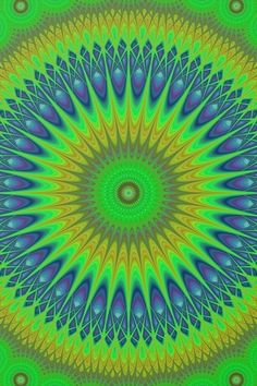 Mandala Graphic Collection