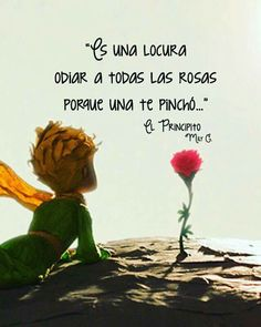 Locura. Little Prince Quotes, The Little Prince, Book Quotes, Life Quotes, Quotes About Everything, Sad Love, Spanish Quotes, Quotes To Live By, Qoutes