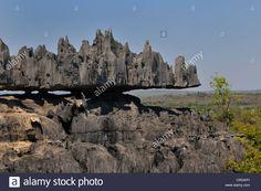 Tsingy, Limestone Formations, Tsingy De Bemaraha National Park ...