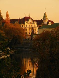 Black Eagle Palace, ORADEA Buit between in Secession Style searched by Dana Mihet What A Wonderful World, Wonderful Places, Amazing Places, Visit Romania, Black Eagle, Central And Eastern Europe, Bucharest Romania, Famous Castles, Austro Hungarian