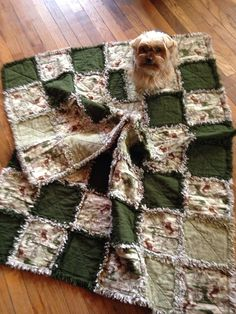 Hurley Gizmo likes the hunting rag quilt