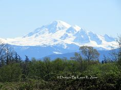 Mt. Baker Taken from Hovander Park In Ferndale Washington