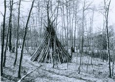Noel: On the trail of Ute wickiups in Colorado