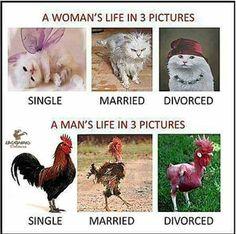 Funny quotes, jokes, memes, photos, and good humor! Humor Facebook, Boys Vs Girls, Men Vs Women, Girl Memes, Man Vs, Losing A Dog, Guy Pictures, Stupid Funny Memes, Cute Funny Animals