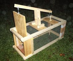 homemade squirrel trap plans - Google Search