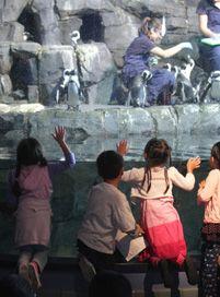 Monterey Bay Aquarium education resources: curricula, games, activities, etc.