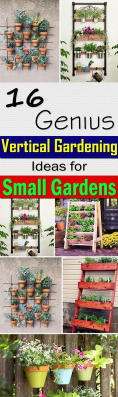 If you have a small space to grow plants, embrace vertical gardening. And with these 16 Genius Vertical Gardening Ideas you can do this easily.
