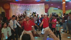 Egyptian Wedding, Professional Website, Wedding Show, Video News, You Youtube, Dance, Concert, Wordpress, Channel