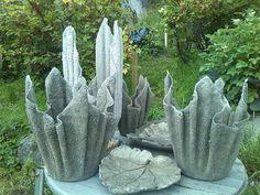 Betong-krukker Cactus Plants, Cactus