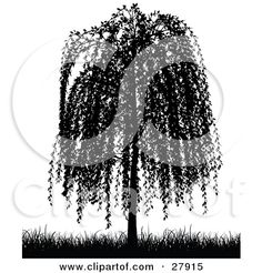 Willow Tree Tattoo | Weeping Willow Tree Tattoo Meaning