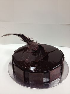 Exam entremet - Black Forest gateaux with chocolate feather decor