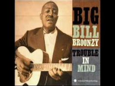 • Big Bill Broonzy: Black, Brown and White
