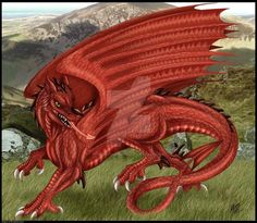 Welsh Dragon by DrakainaQueen.deviantart.com on @DeviantArt