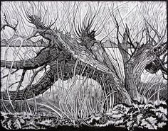 Old broken tree - Black and White - Linocut - Landscape - Myrtle Pizzey | The Printmaker