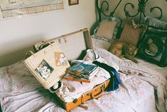 Immagine di vintage, travel, and cat