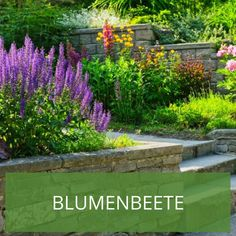 Blumenbeet Gestaltung Mehrjährig 69 best blumenbeete images on pinterest in 2018 | flower beds