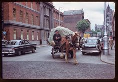 vintage everyday: 30 Amazing Color Photographs of Dublin, Ireland in 1961 Ireland Pictures, Images Of Ireland, Old Pictures, Old Photos, Dublin Street, Dublin Airport, Dublin City, Liverpool Docks, Horse Cart