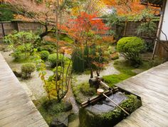 Hosen-in Temple Garden: Located in the Ohara part of Kyoto, Japa