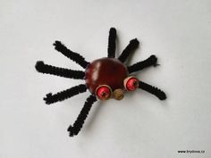 Kaštanoví pavouci - brydova.cz Bobby Pins, Hair Accessories, Hairpin, Hair Pins, Hair Barrettes, Hair Accessory