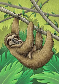 Sloths Illustration Giclée Print on A3 300gsm by LyndseyGreen
