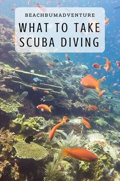 scuba dive packing guide What to take scuba diving in asia top dive destinations in tropical, warm water seas oceans. Essential items and packing list guide for useful dive accessories to take on dive boats like gopros and red filters. Diver information t Best Scuba Diving, Scuba Diving Gear, Cave Diving, Diving Wetsuits, Scuba Diving Equipment, Backpacking Asia, Maui Vacation, Snorkelling, Koh Tao