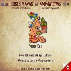 Yum Kax 🌽🌿🌶🥑🍋: Dioses mayas ... Los más importantes 🔸 Mayan gods ... The most important ☀🌨🔥💀🇲🇽 #infografía #infographic #dioses #gods #diosesmayas #mayangods #maya #mayan #culturamaya #mayanculture #religion  #nombres #names #maya #language #caribe #caribbean #cultura #culture #informacion #information #interesante #interesting #yumkax #rivieramaya #mexico