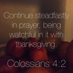 New Blog Post! // Thanksgiving // Colossians // November // Jesus // Bible Verse // Grateful