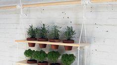 Les pots font la planche ! / Suspension pour pots de fleurs. / Plant holder from a wooden board.