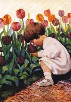 Tulip time...don't pick that tulip! $50 fine!...hahaha