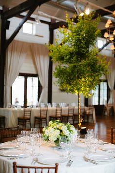 Wedding Venue Charlottesville Va Shades Of Green Pippin Hill Farm