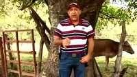 México: escándalo por video de periodistas con capo de los Templarios - BBC Mundo