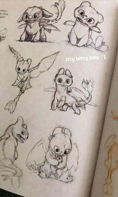 DreamWorks - Art of How To Train Your Dragon The Hidden World How To Train Dragon, How To Train Your, Cute Drawings, Animal Drawings, Dragon Sketch, Dragon Drawings, Httyd Dragons, Dragon Art, Art Sketchbook