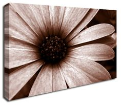 Simply Canvas have a great variety of canvas wall prints. Abstract wall art from only Wall Prints, Canvas Art Prints, Canvas Wall Art, Abstract Canvas Art, Daisy, Flowers, Daisies, Florals, Bellis Perennis