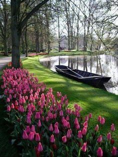 The Essential Guide to the Keukenhof Flower Gardens Near Amsterdam