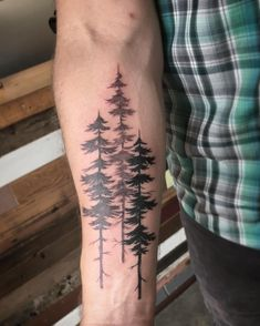 A few #shady #evergreens for Travis. #pine #tree #oregon @wonderlandpdx