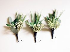 Eucalyptus and pine boutonnieres. Could use olive also.