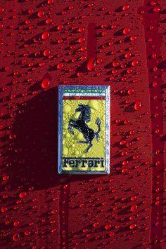 Ferrari Emblem 5 von Jill Reger – Delia – Join in the world Hd Wallpapers Of Cars, F1 Wallpaper Hd, Car Iphone Wallpaper, Sports Car Wallpaper, Phone Wallpapers, Ferrari Scuderia, Ferrari F1, Ferrari Logo, Lamborghini