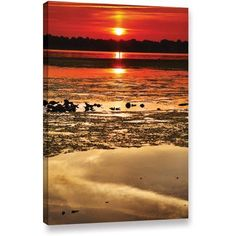ArtWall Steven Ainsworth Breaking Dawn Gallery-Wrapped Canvas, Size: 24 x 36, Brown
