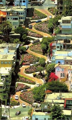 Curves, Lombard Street, San Francisco...we drove down this very steep and winding road. Very cool.