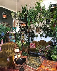 Bohemian Latest And Stylish Home decor Design And Life Style Ideas Room With Plants, House Plants Decor, Plant Rooms, Room Ideas Bedroom, Bedroom Decor, Bedroom Designs, Modern Bedroom, Indie Room, Aesthetic Room Decor
