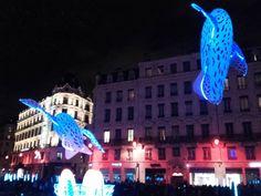 #igersfrance #fetedelumiere #igerslyon #igerseurope #igersworld #igerspoland #igerswroclaw #igers #instahramers #instagram #igshots #photooftheday #lyon #france #nightphotography #night