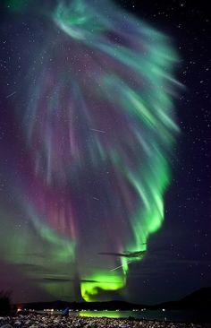 aurora...