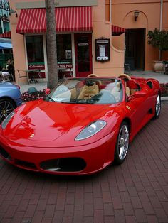 Ferrari - Celebration, FL Exotic Car Show 4/14/2012